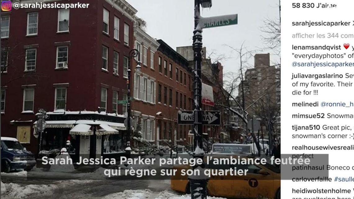 VIDEO – Alexandra Lamy, Iris Mittenaere… Vivez la tempête de neige à New-York avec les stars
