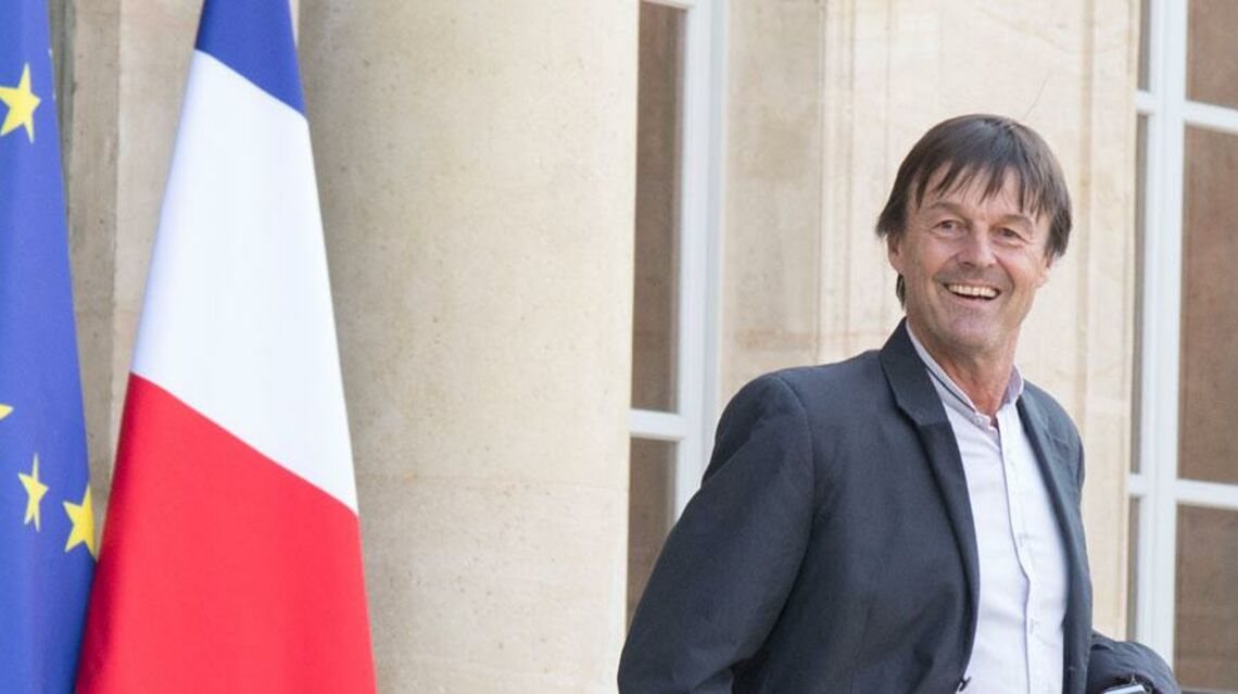 VIDEO Nicolas Hulot au gouvernement? De la télé à la politique