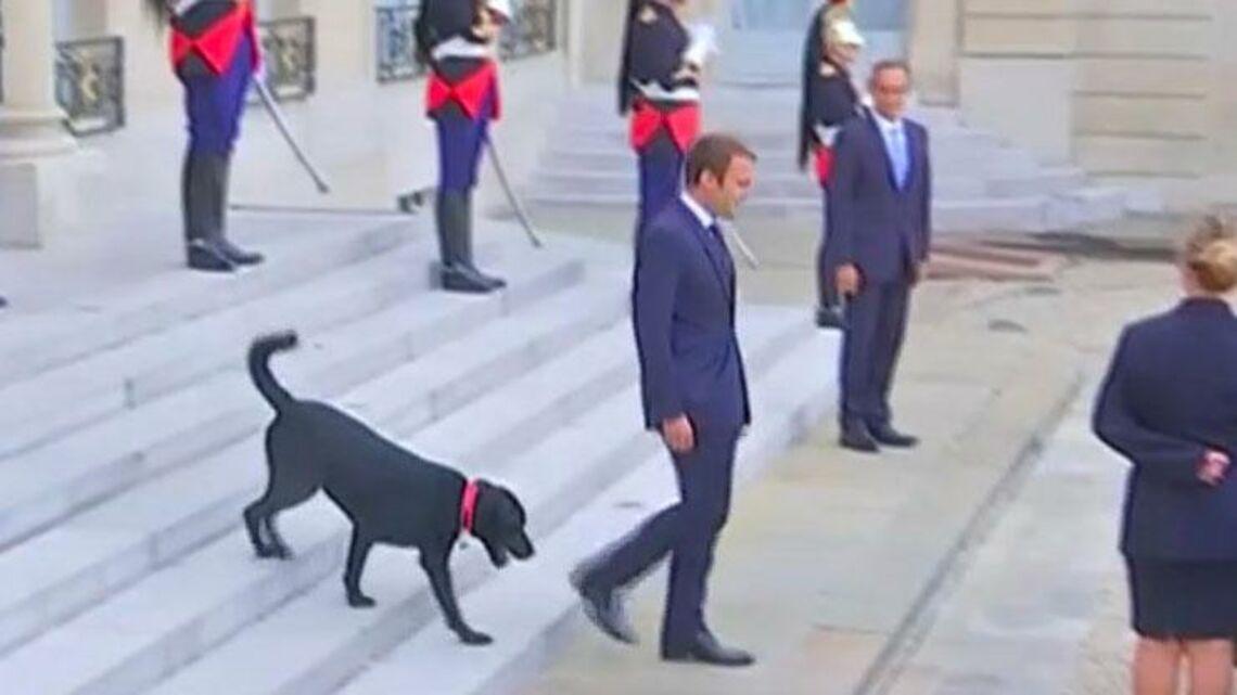 VIDEO – Qui sont les meilleurs amis de Nicolas Sarkozy, François Hollande et Emmanuel Macron?