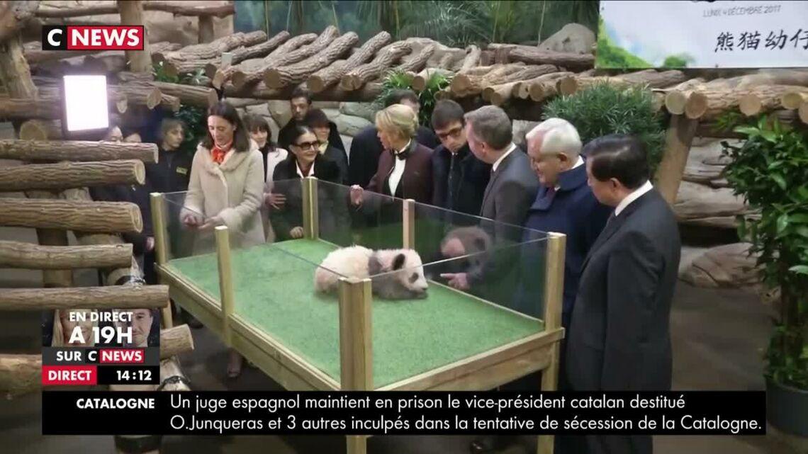 VIDEO – Brigitte Macron marraine du bébé panda: l'image qui va vous attendrir