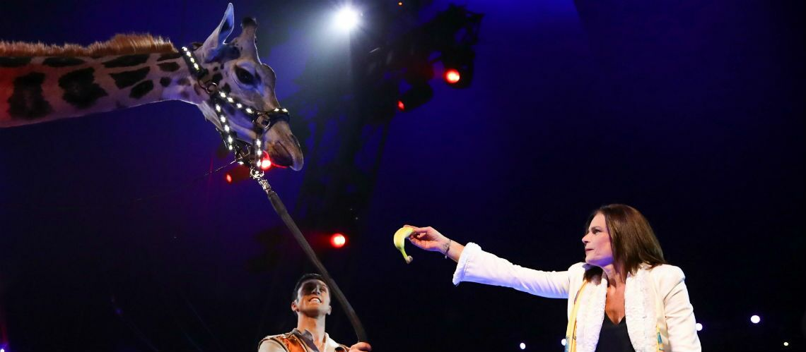 Le coup de gueule de Stéphanie de Monaco pour les animaux du cirque: «Je me battrai jusqu'au bout»