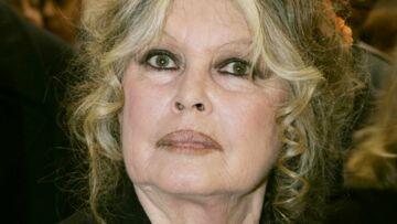 Pour éviter les «connards qui risqueraient d'abîmer sa tombe», Brigitte Bardot sera enterrée chez elle