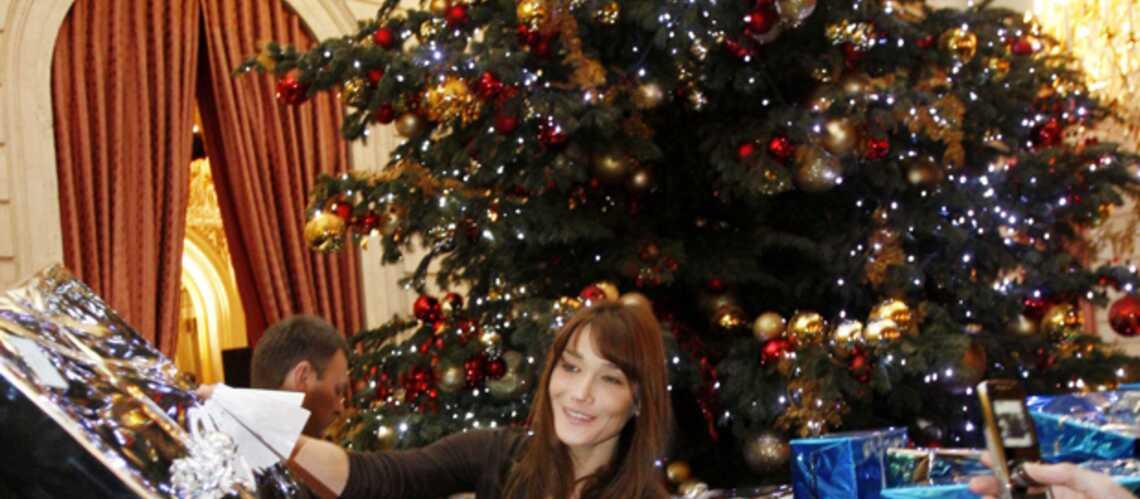 Carla Bruni fait un don de 238 000 euros