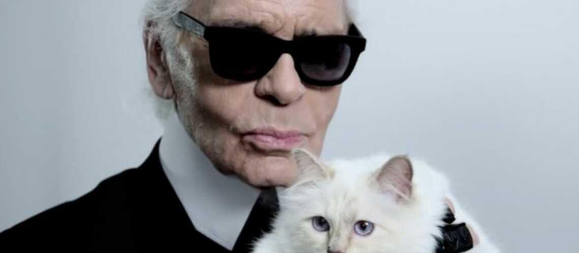 Karl Lagerfeld: «Je n'aurais jamais pensé que je tomberais à ce point amoureux d'un chat»