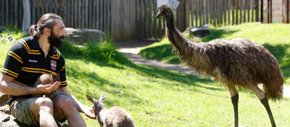 Sébastien Chabal, heureux au pays des kangourous