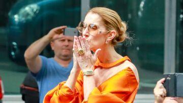 Le beau cadeau des fans de Céline Dion pour sa fondation