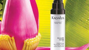 Kadalys, tous les bienfaits de la banane