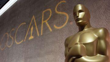 Quel film représentera la France aux Oscars?