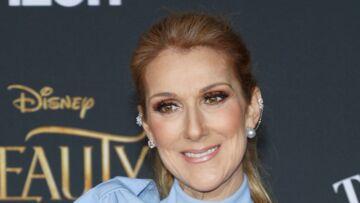 VIDEO –Bluffée par la voix d'un fan, Céline Dion le fait monter sur scène