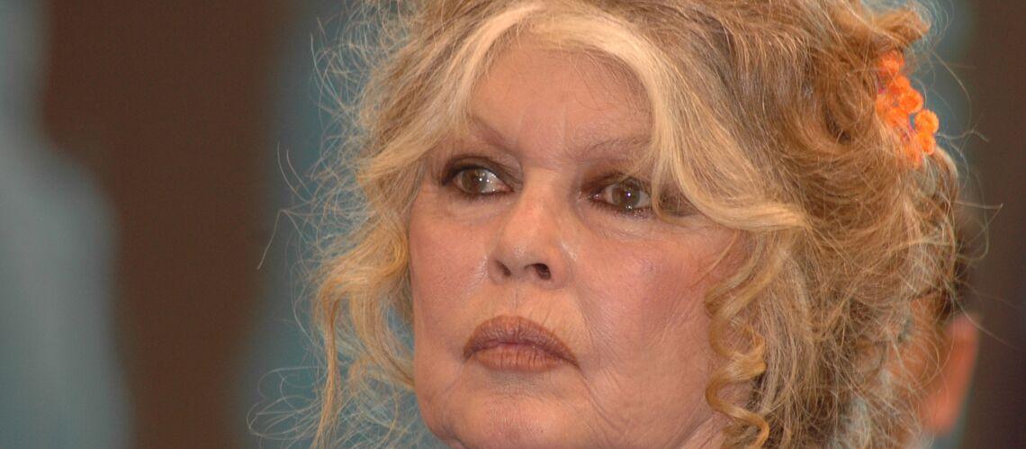 Brigitte Bardot s'en prend violemment à Cyril Hanouna